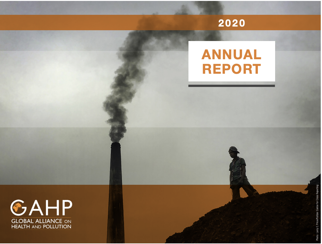 Cover of the GAHP 2020 Annual Report